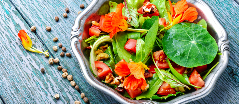 Kapuzinerkresse im Salat
